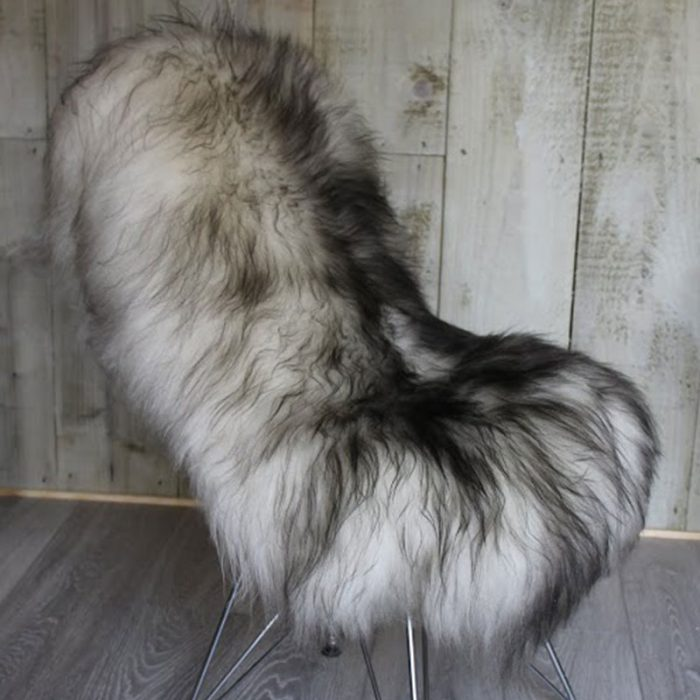 Black Tipped Ivory Icelandic Sheepskin on Chair