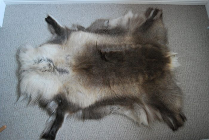Natural Reindeer Hide Medium on Floor