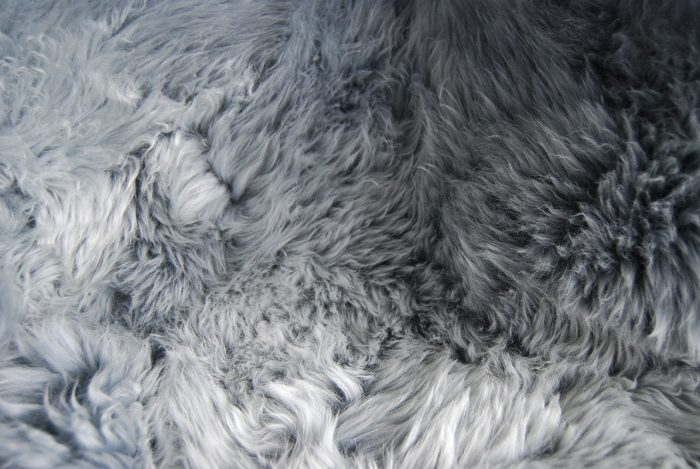 Pewter Grey Sheepskin Rug Close-Up