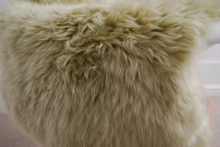 Pistachio Sheepskin CLOSE UP